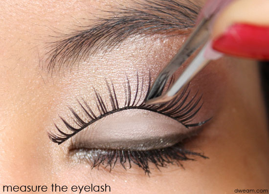 measure How to Wear Fake Eyelashes for Beginners-Step by Step Tutorial