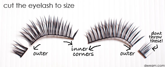 trim How to Wear Fake Eyelashes for Beginners-Step by Step Tutorial